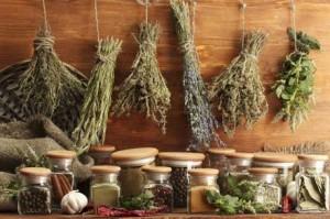 Травы для лечения дисбактериоза кишечника